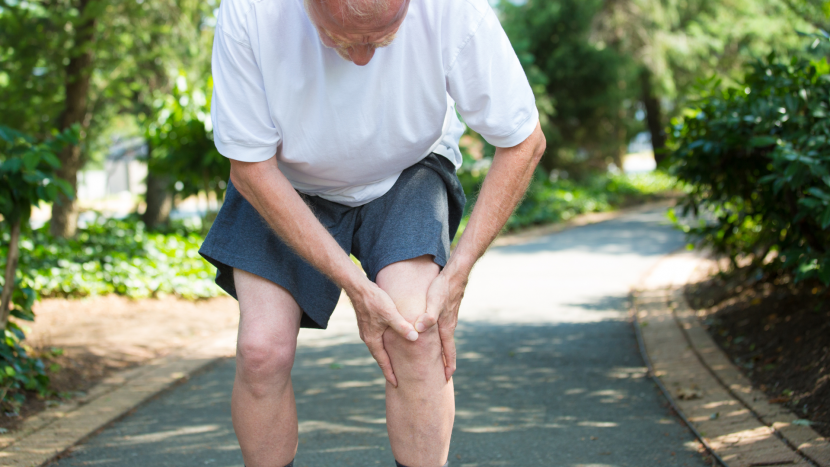 GLAD knæ hofte